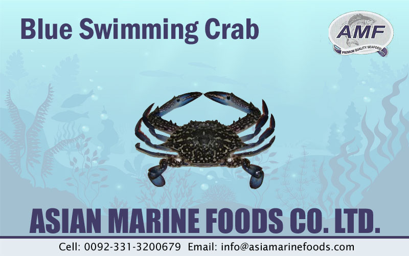 Blue Swimming Crab Exporter Pakistan