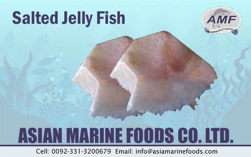 Salted Jellyfish Exporter Pakistan